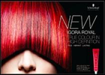Новая крем-краска для волос Igora Royal Schwarzkopf